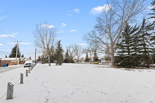 Photo 38: 111 Castleridge Road NE in Calgary: Castleridge Detached for sale : MLS®# A1052157