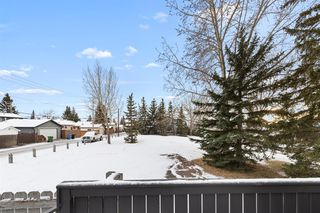 Photo 41: 111 Castleridge Road NE in Calgary: Castleridge Detached for sale : MLS®# A1052157