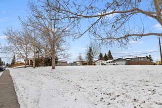 Photo 40: 111 Castleridge Road NE in Calgary: Castleridge Detached for sale : MLS®# A1052157