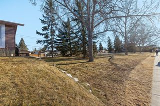 Photo 39: 111 Castleridge Road NE in Calgary: Castleridge Detached for sale : MLS®# A1052157