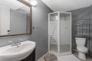 Photo 25: 111 Castleridge Road NE in Calgary: Castleridge Detached for sale : MLS®# A1052157