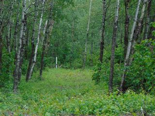 Photo 7: Lot 7 27331 Township Road 481: Rural Leduc County Rural Land/Vacant Lot for sale : MLS®# E4223329