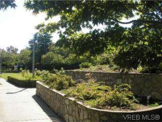 Photo 8: 205 951 Topaz Ave in VICTORIA: Vi Hillside Condo for sale (Victoria)  : MLS®# 514982