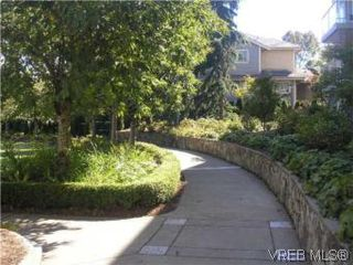 Photo 6: 205 951 Topaz Ave in VICTORIA: Vi Hillside Condo for sale (Victoria)  : MLS®# 514982