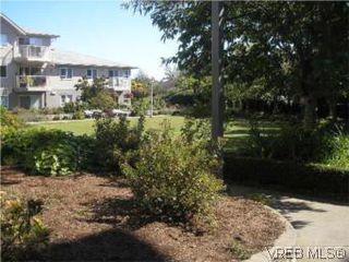 Photo 7: 205 951 Topaz Ave in VICTORIA: Vi Hillside Condo for sale (Victoria)  : MLS®# 514982