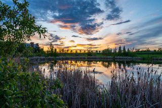 Photo 46: 238 AMBLESIDE Drive in Edmonton: Zone 56 House Half Duplex for sale : MLS®# E4183811