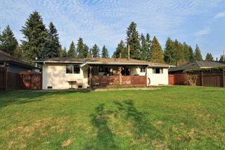 Photo 11: 21494 123 Avenue in Maple Ridge: West Central House for sale : MLS®# R2436435