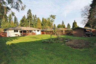 Photo 12: 21494 123 Avenue in Maple Ridge: West Central House for sale : MLS®# R2436435