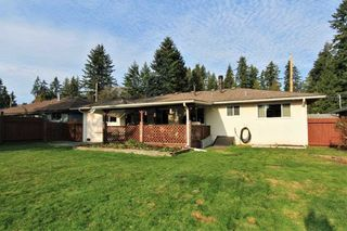 Photo 13: 21494 123 Avenue in Maple Ridge: West Central House for sale : MLS®# R2436435