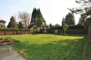 Photo 9: 21494 123 Avenue in Maple Ridge: West Central House for sale : MLS®# R2436435