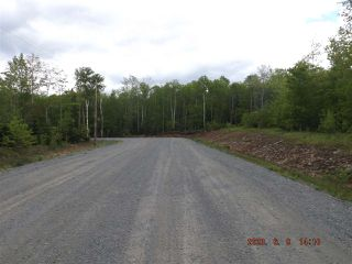 Photo 1: Lot 29 McKenzie Lane in Mount Uniacke: 105-East Hants/Colchester West Vacant Land for sale (Halifax-Dartmouth)  : MLS®# 202022948