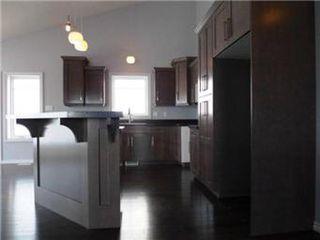 Photo 12: 1107 Patrick Terrace in Saskatoon: Willowgrove Single Family Dwelling for sale (Saskatoon Area 01)  : MLS®# 389911