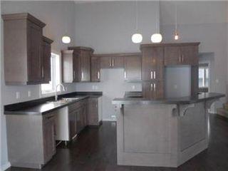 Photo 11: 1107 Patrick Terrace in Saskatoon: Willowgrove Single Family Dwelling for sale (Saskatoon Area 01)  : MLS®# 389911
