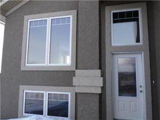 Photo 4: 1107 Patrick Terrace in Saskatoon: Willowgrove Single Family Dwelling for sale (Saskatoon Area 01)  : MLS®# 389911