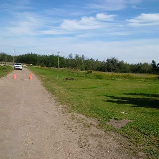Photo 10: 24543 TWP RD 502: Rural Leduc County Rural Land/Vacant Lot for sale : MLS®# E4172279
