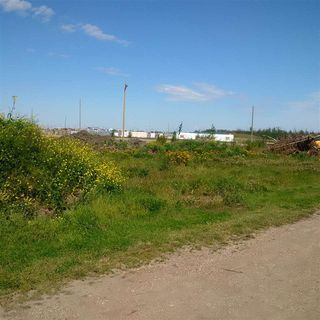 Photo 9: 24543 TWP RD 502: Rural Leduc County Rural Land/Vacant Lot for sale : MLS®# E4172279