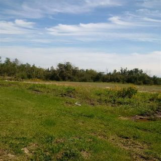Photo 12: 24543 TWP RD 502: Rural Leduc County Rural Land/Vacant Lot for sale : MLS®# E4172279