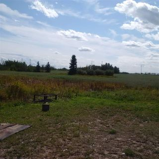 Photo 7: 24543 TWP RD 502: Rural Leduc County Rural Land/Vacant Lot for sale : MLS®# E4172279