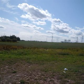 Photo 6: 24543 TWP RD 502: Rural Leduc County Rural Land/Vacant Lot for sale : MLS®# E4172279