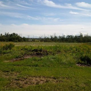 Photo 11: 24543 TWP RD 502: Rural Leduc County Rural Land/Vacant Lot for sale : MLS®# E4172279