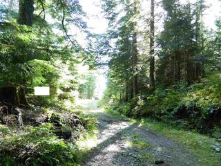 Photo 11: D 1133 HOLLYBURN MTN Terrace in West Vancouver: Cypress Park Estates Land for sale : MLS®# R2427836