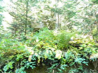 Photo 17: D 1133 HOLLYBURN MTN Terrace in West Vancouver: Cypress Park Estates Land for sale : MLS®# R2427836