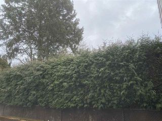 Photo 15: 6346 REID Road in Chilliwack: Sardis West Vedder Rd House for sale (Sardis)  : MLS®# R2449129