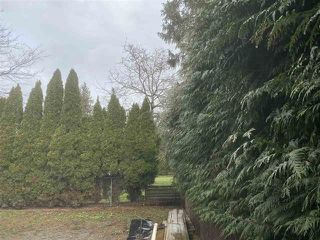 Photo 16: 6346 REID Road in Chilliwack: Sardis West Vedder Rd House for sale (Sardis)  : MLS®# R2449129