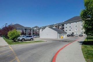 Photo 31: 4421 4975 130 Avenue SE in Calgary: McKenzie Towne Apartment for sale : MLS®# A1020076