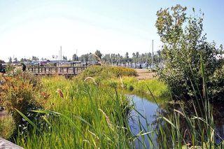 """Photo 15: 106 12633 NO. 2 Road in Richmond: Steveston South Condo for sale in """"NAUTICA NORTH"""" : MLS®# R2523611"""