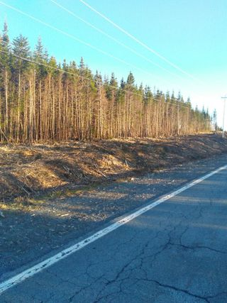 Photo 2: 0 Highway 7 in Spanish Ship Bay: 303-Guysborough County Vacant Land for sale (Highland Region)  : MLS®# 202100404