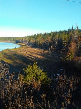 Photo 1: 0 Highway 7 in Spanish Ship Bay: 303-Guysborough County Vacant Land for sale (Highland Region)  : MLS®# 202100404
