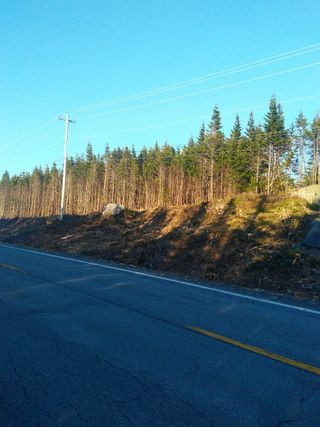 Photo 3: 0 Highway 7 in Spanish Ship Bay: 303-Guysborough County Vacant Land for sale (Highland Region)  : MLS®# 202100404