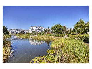 """Photo 10: 429 12633 NO 2 Road in Richmond: Steveston South Condo for sale in """"NAUTICA NORTH"""" : MLS®# V854036"""