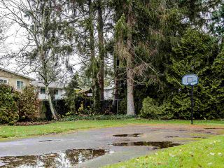 "Photo 15: 206 5191 203 Street in Langley: Langley City Townhouse for sale in ""Longlea"" : MLS®# R2422119"