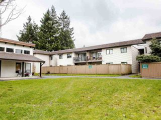 "Photo 16: 206 5191 203 Street in Langley: Langley City Townhouse for sale in ""Longlea"" : MLS®# R2422119"