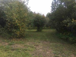 Photo 18: 110044 Twp.Rd 541: Rural Two Hills County Rural Land/Vacant Lot for sale : MLS®# E4198589