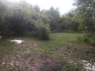 Photo 15: 110044 Twp.Rd 541: Rural Two Hills County Rural Land/Vacant Lot for sale : MLS®# E4198589