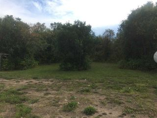 Photo 13: 110044 Twp.Rd 541: Rural Two Hills County Rural Land/Vacant Lot for sale : MLS®# E4198589