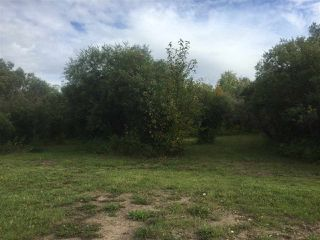 Photo 17: 110044 Twp.Rd 541: Rural Two Hills County Rural Land/Vacant Lot for sale : MLS®# E4198589