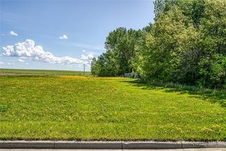 Photo 6: 530 11 Avenue NE: Three Hills Land for sale : MLS®# C4299966