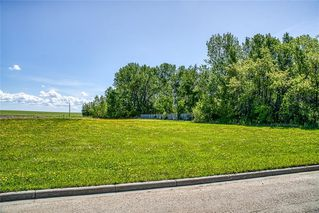 Photo 7: 530 11 Avenue NE: Three Hills Land for sale : MLS®# C4299966