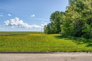 Photo 5: 530 11 Avenue NE: Three Hills Land for sale : MLS®# C4299966