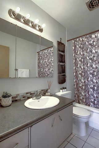 Photo 25: 5504 89 Avenue in Edmonton: Zone 18 House for sale : MLS®# E4206181