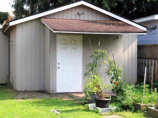 Photo 23: 12430 208 Street in Maple Ridge: Northwest Maple Ridge House for sale : MLS®# R2496067