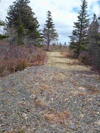 Photo 5: 252 Whitehead Road in Harrietsfield: 9-Harrietsfield, Sambr And Halibut Bay Vacant Land for sale (Halifax-Dartmouth)  : MLS®# 202025766