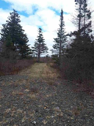 Photo 1: 252 Whitehead Road in Harrietsfield: 9-Harrietsfield, Sambr And Halibut Bay Vacant Land for sale (Halifax-Dartmouth)  : MLS®# 202025766