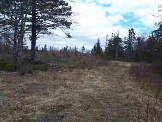 Photo 6: 252 Whitehead Road in Harrietsfield: 9-Harrietsfield, Sambr And Halibut Bay Vacant Land for sale (Halifax-Dartmouth)  : MLS®# 202025766