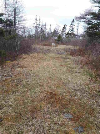 Photo 3: 252 Whitehead Road in Harrietsfield: 9-Harrietsfield, Sambr And Halibut Bay Vacant Land for sale (Halifax-Dartmouth)  : MLS®# 202025766