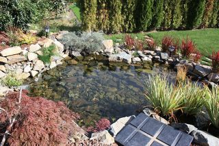 "Photo 26: 35557 JADE Drive in Abbotsford: Abbotsford East House for sale in ""EAGLE MOUNTAIN"" : MLS®# F2921273"